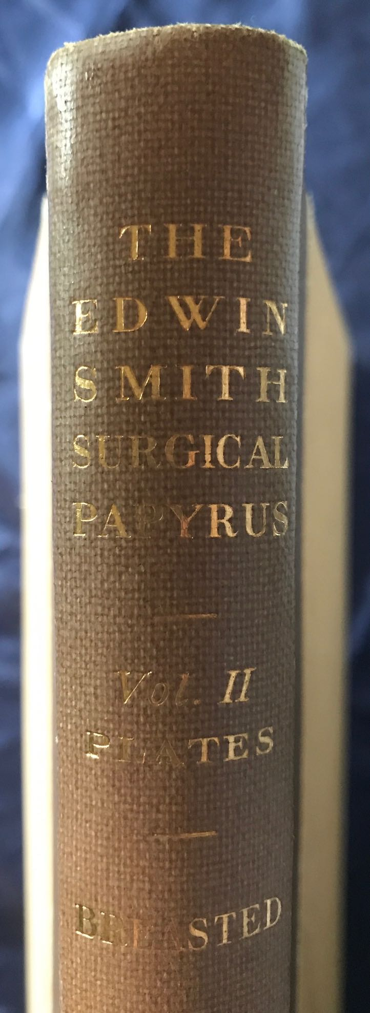 The Edwin Smith surgical papyri  Vol  I: Hieroglyphic