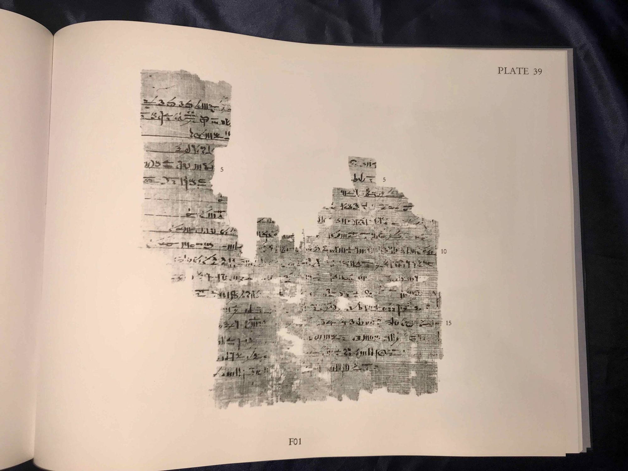 The Ancient Egyptian Book of Thoth: A Demotic Discourse on Knowledge