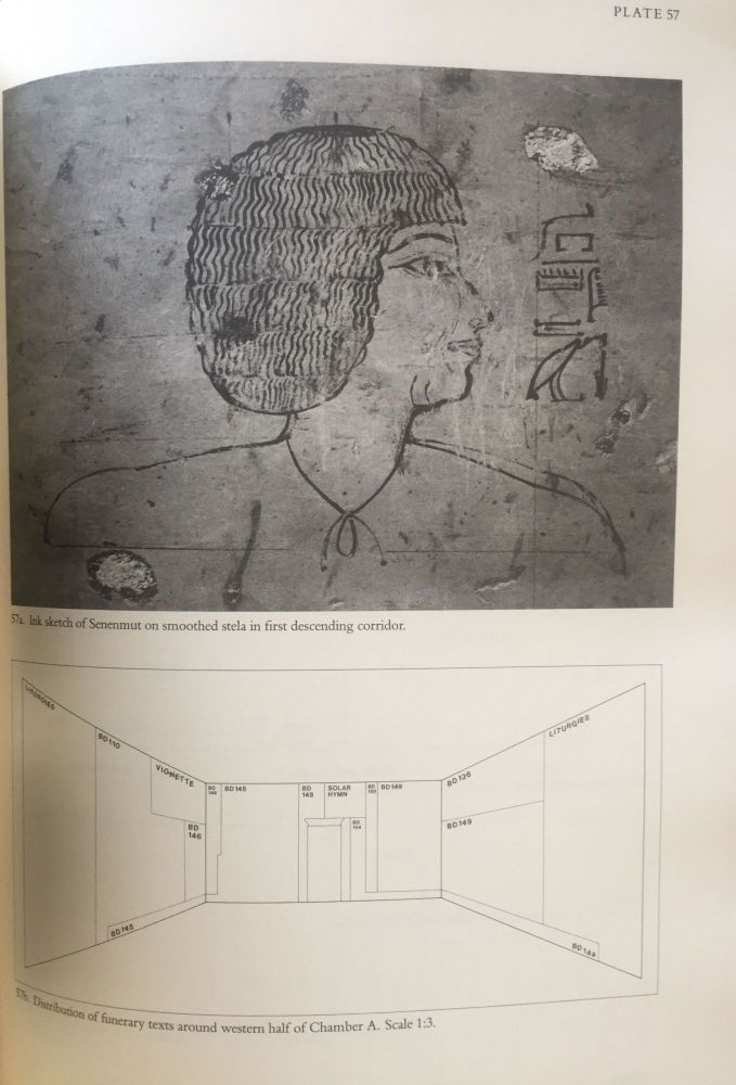 The tombs of Senenmut. The architecture and decoration of tombs 71 and 353. DORMAN Peter.[newline]M3649h.jpg