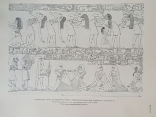 The tomb of Kheruef[newline]M0022-20.jpg