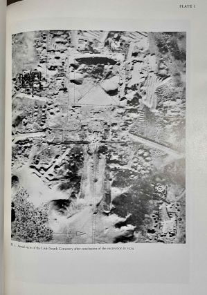 The south cemeteries of Lisht. Vol. I: the pyramid of Senwosret I. Vol. II: The control notes and team marks. Vol. III: the pyramid complex of Senwosret I (complete set)[newline]M0092-08.jpeg
