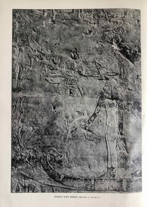 The rock tombs of Meir. Part I-VI (complete set)[newline]M0154a-03.jpg