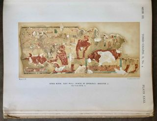 The rock tombs of Meir. Part I-VI (complete set)[newline]M0154a-26.jpg
