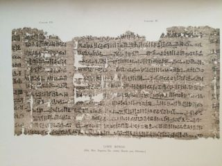 Facsimiles of Egyptian Hieratic Papyri in the British Museum. 1st series & 2nd series[newline]M0266-02.jpg