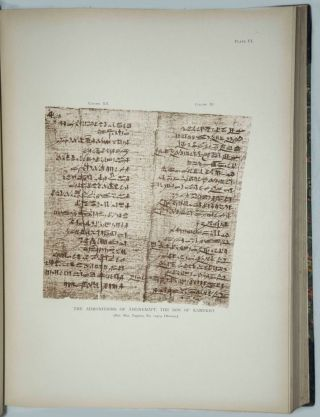 Facsimiles of Egyptian Hieratic Papyri in the British Museum. 1st series & 2nd series[newline]M0266-04.jpg