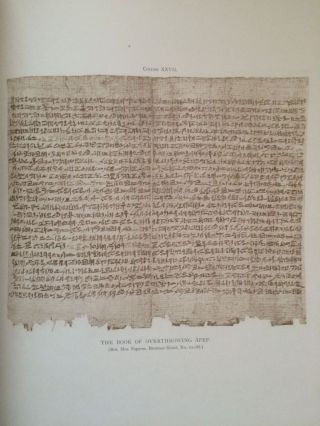 Facsimiles of Egyptian Hieratic Papyri in the British Museum. 1st series & 2nd series[newline]M0266-05.jpg