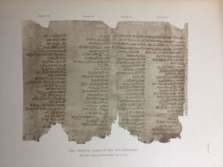 Facsimiles of Egyptian Hieratic Papyri in the British Museum. 1st series.[newline]M0266a-10.jpg