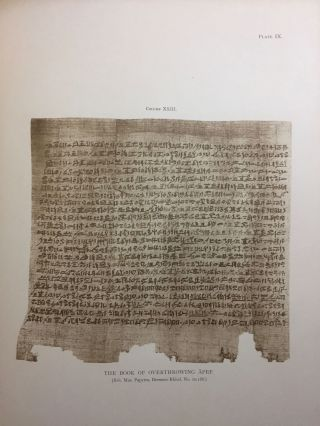 Facsimiles of Egyptian Hieratic Papyri in the British Museum. 1st series.[newline]M0266a-11.jpg