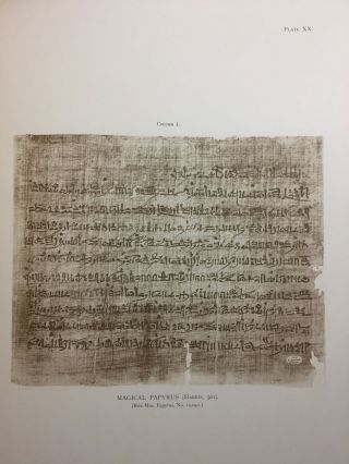 Facsimiles of Egyptian Hieratic Papyri in the British Museum. 1st series.[newline]M0266a-13.jpg