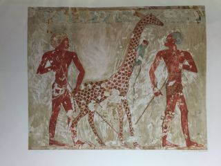 Paintings from the Tomb of Rekh-Mi-Re' at Thebes[newline]M0403b-18.jpg