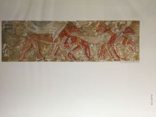 Paintings from the Tomb of Rekh-Mi-Re' at Thebes[newline]M0403b-20.jpg
