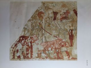 Paintings from the Tomb of Rekh-Mi-Re' at Thebes[newline]M0403b-28.jpg