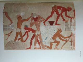 Paintings from the Tomb of Rekh-Mi-Re' at Thebes[newline]M0403b-38.jpg