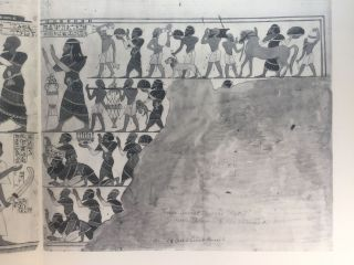 The tomb of Huy, Viceroy of Nubia in the reign of Tutankhamun (No 40)[newline]M0418b-15.jpg