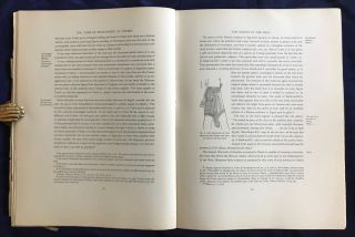 The tomb of Rekh-mi-re at Thebes. Vol. I & II (complete set)[newline]M0426c-08.jpg
