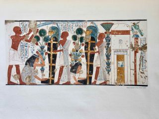 Robb de Peyster Tytus series, Vol. IV: The tomb of the two sculptors at Thebes[newline]M0429d-24.jpeg
