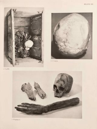 Catalogue of Egyptian Antiquities in the British Museum. Vol. I: Mummies and Human Remains[newline]M0444d-12.jpg