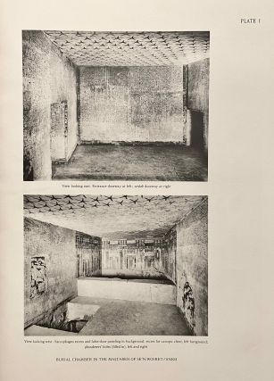 The texts in the mastabeh of Sen-Wosret-Ankh at Lisht. With plates by Lindsley F. Hall from photographs by Harry Burton.[newline]M0773-10.jpeg