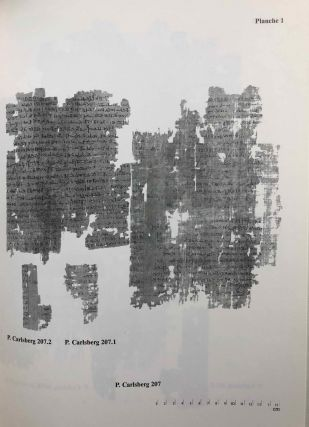 Demotic Texts from the Collection (The Carlsberg Papyri, vol. 1)[newline]M0800a-04.jpg