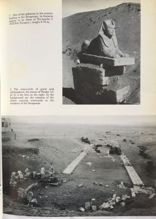 Saqqara. The royal cemetery of Memphis. Excavations and discoveries since 1850.[newline]M1028a-03.jpg