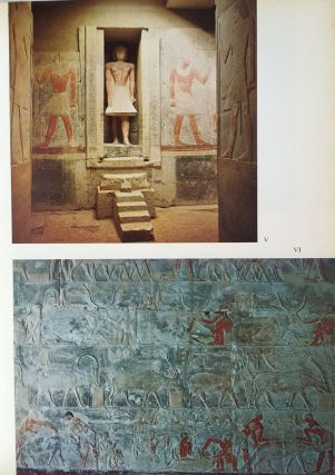 Saqqara. The royal cemetery of Memphis. Excavations and discoveries since 1850.[newline]M1028a-04.jpg