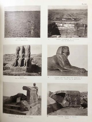 Tanis. Part I. 1883-4. Part II: Tanis II & Nebesheh (Am) and Defenneh (Tahpanhes) (complete set)[newline]M1311c-16.jpg