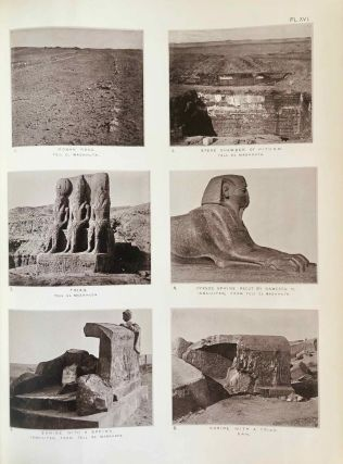 Tanis. Part I. 1883-4. Part II: Tanis II & Nebesheh (Am) and Defenneh (Tahpanhes) (complete set)[newline]M1311d-19.jpg