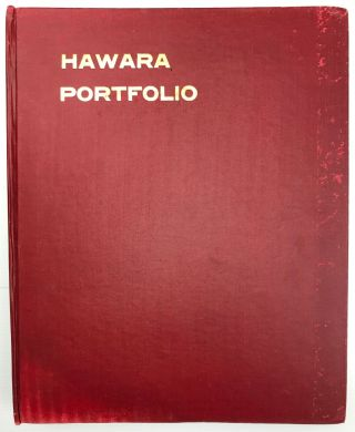 The Hawara portfolio: paintings of the Roman Age. Found by W.M. Flinders Petrie - 1888 and 1911[newline]M1319a-01.jpg