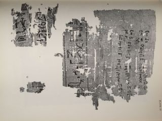 The Abu Sir papyri. Edited, together with Complementary Texts in other collections[newline]M1382e-16.jpg