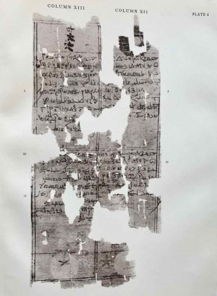 A Vienna Demotic Papyrus on Eclipse- and Lunar-Omina. Edited with translation and commentary. (Brown Egyptological Studies. 2.)[newline]M1639c-06.jpg