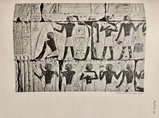 The Decoration of the Tomb of Per-Neb. The technique and the color conventions.[newline]M2381b-13.jpeg