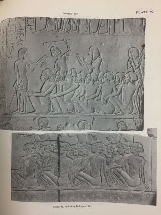 The Memphite Tomb of Horemheb commander-in-chief of Tut'ankhamun. Part I: The reliefs, inscriptions, and commentary.[newline]M2538a-20.jpg