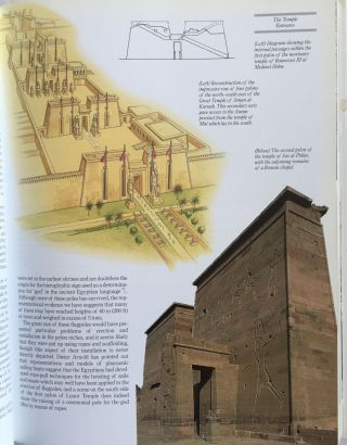 The complete Temples of Ancient Egypt[newline]M3252a-04.jpg