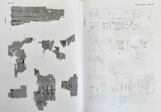 Abusir vol. IX: The pyramid complex of Raneferef. The archaeology. Vol. X: The papyrus archive.[newline]M3604-18.jpeg