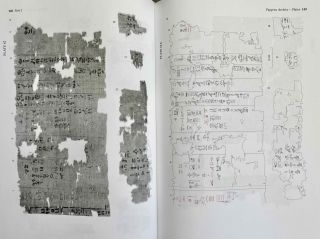 Abusir vol. IX: The pyramid complex of Raneferef. The archaeology. Vol. X: The papyrus archive.[newline]M3604-19.jpeg