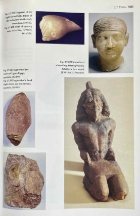 The pyramid complex of Raneferef. The archaeology.[newline]M3604a-19.jpeg