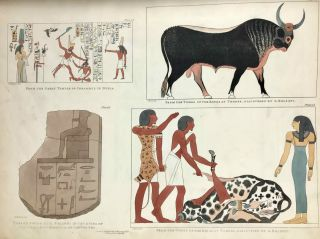 Plates illustrative of the researches and operations of G. Belzoni in Egypt and Nubia[newline]M3609b-15.jpeg
