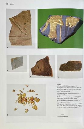 Faience inlays from the funerary temple of King Raneferef[newline]M3665-08.jpeg