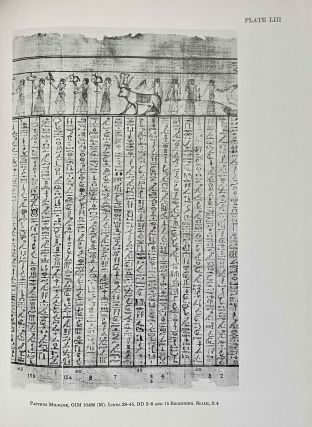The Egyptian book of the dead documents in the Oriental Institute Museum at the University of Chicago. Ideas of the Ancient Egyptians Concerning the Hereafter As Expressed in Their Own Terms. SAOC 37[newline]M3686a-10.jpeg