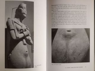 The Akhenaten colossi of Karnak[newline]M4153-10.jpg