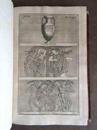 "De Etruria regali libri VII (translation of title: ""About royal Etruria, 7 books"")[newline]M5120-033.jpg"
