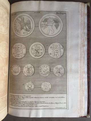 "De Etruria regali libri VII (translation of title: ""About royal Etruria, 7 books"")[newline]M5120-101.jpg"
