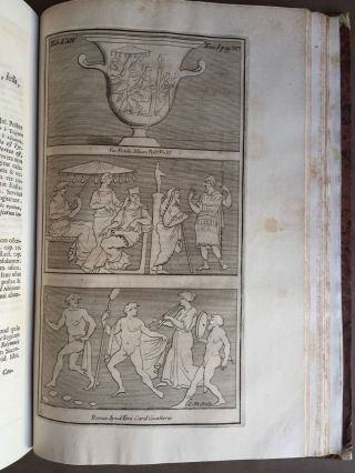 "De Etruria regali libri VII (translation of title: ""About royal Etruria, 7 books"")[newline]M5120-105.jpg"