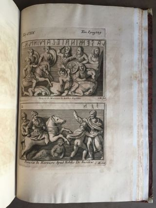 "De Etruria regali libri VII (translation of title: ""About royal Etruria, 7 books"")[newline]M5120-110.jpg"
