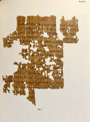 A Castration Story from the Tebtunis Temple Library. The Carlsberg Papyri, vol. 14.[newline]M7332-06.jpg