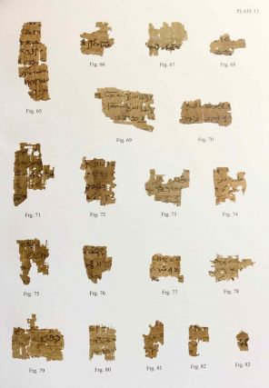 A Castration Story from the Tebtunis Temple Library. The Carlsberg Papyri, vol. 14.[newline]M7332-07.jpg