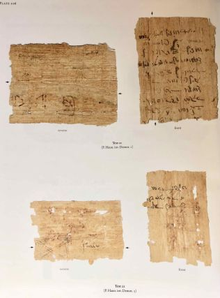 Catalogue of Egyptian Funerary Papyri in Danish Collections. The Carlsberg Papyri, vol. 13.[newline]M7333-09.jpg