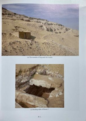 The cemetery of Meir. Vol. I: The tomb of Pepyankh the Middle. Vol. II: The tomb of Pepyankh the Black. Vol. III: The tomb of Niankhpepy the Black. Vol. IV: The tomb of Senbi I and Wekhhotep I (complete set)[newline]M8137a-05.jpeg
