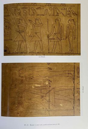 The cemetery of Meir. Vol. I: The tomb of Pepyankh the Middle. Vol. II: The tomb of Pepyankh the Black. Vol. III: The tomb of Niankhpepy the Black. Vol. IV: The tomb of Senbi I and Wekhhotep I (complete set)[newline]M8137a-14.jpeg