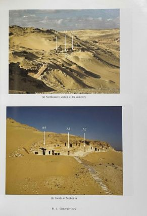 The cemetery of Meir. Vol. I: The tomb of Pepyankh the Middle. Vol. II: The tomb of Pepyankh the Black. Vol. III: The tomb of Niankhpepy the Black. Vol. IV: The tomb of Senbi I and Wekhhotep I (complete set)[newline]M8137a-20.jpeg